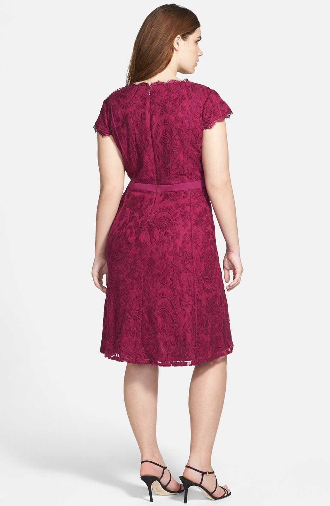 Alternate Image 2  - Adrianna Papell Cap Sleeve Lace Fit & Flare Dress (Plus Size)