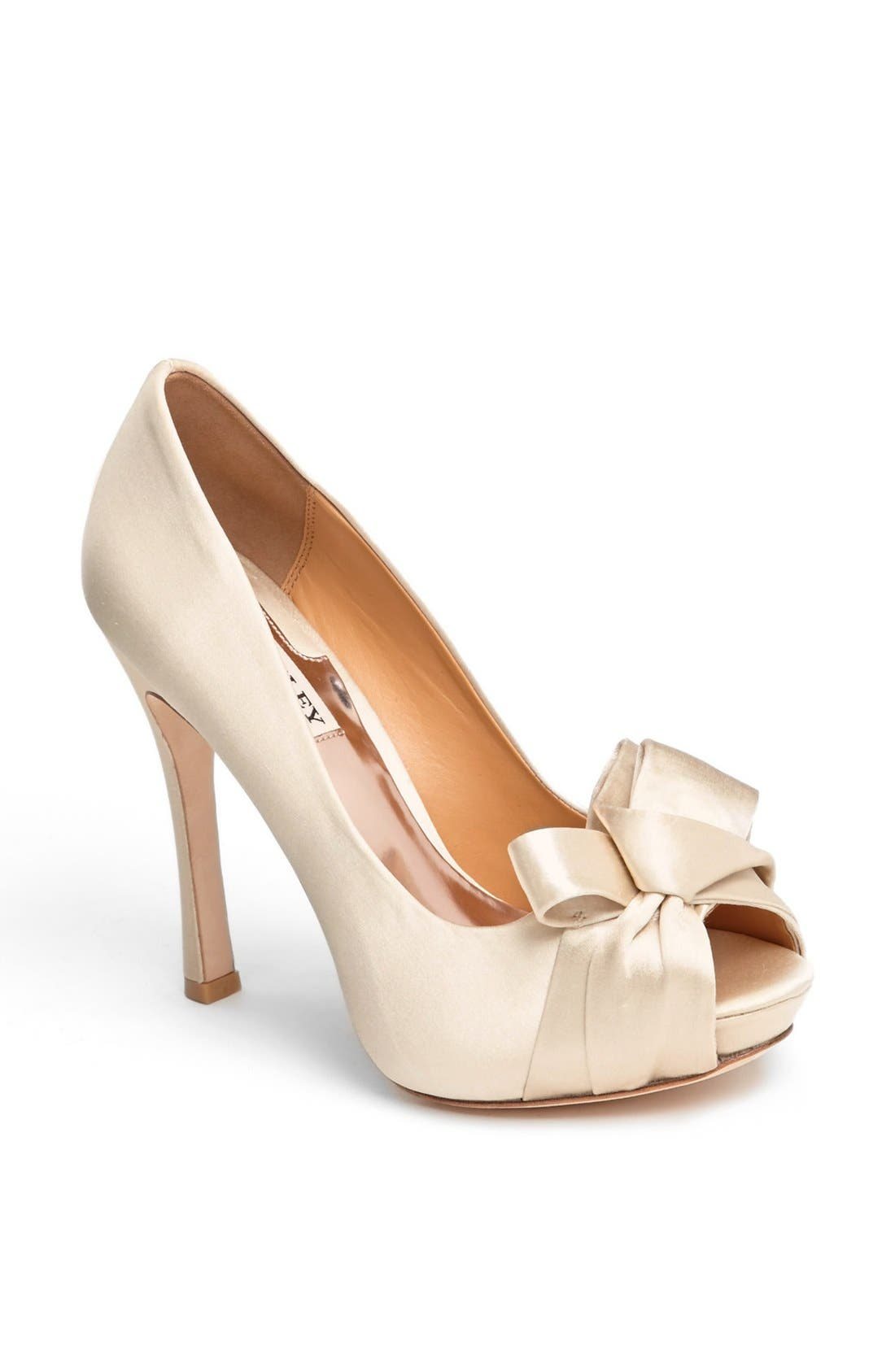 Alternate Image 1 Selected - Badgley Mischka 'Pasquel' Pump
