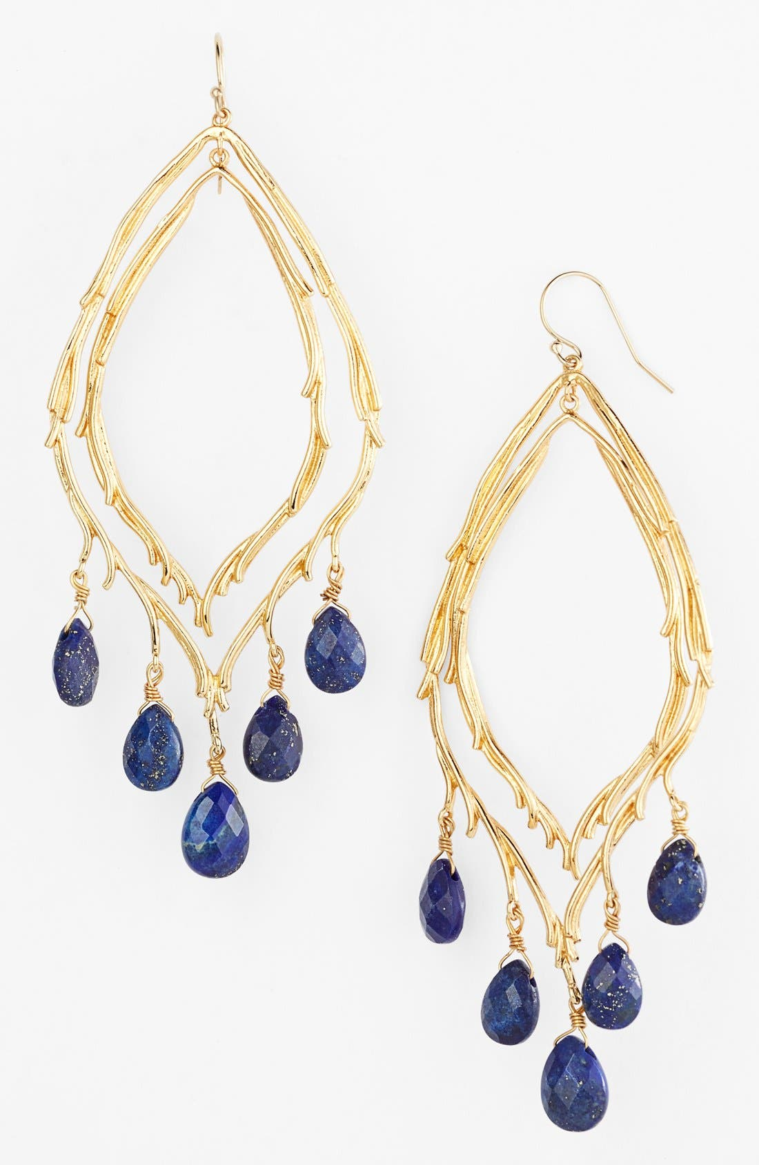 Main Image - Alexis Bittar 'Elements - Maldivian' Feathered Stone Teardrop Orbiting Earrings