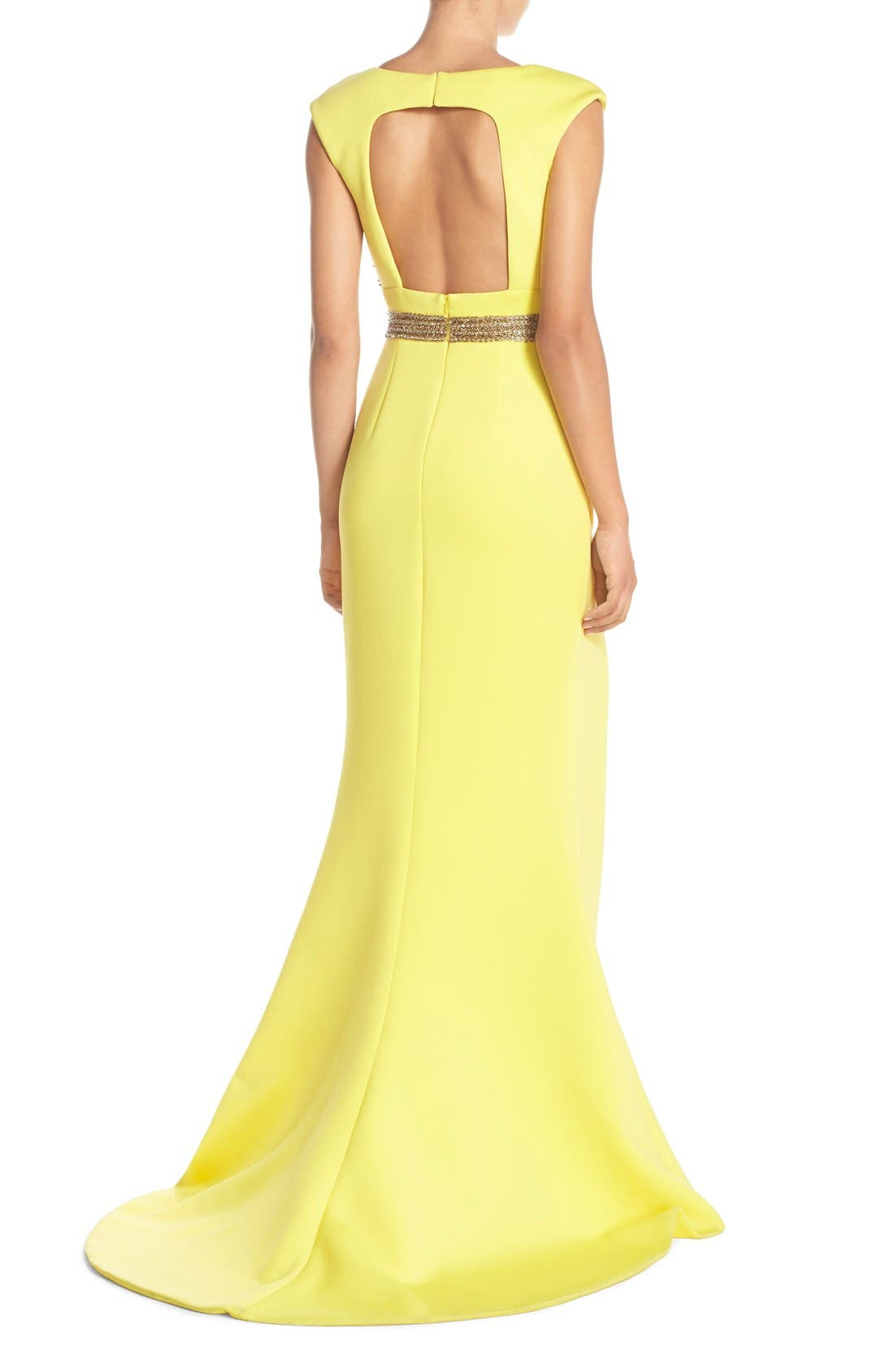 Alternate Image 2  - Terani Couture Open Back Embellished Gown
