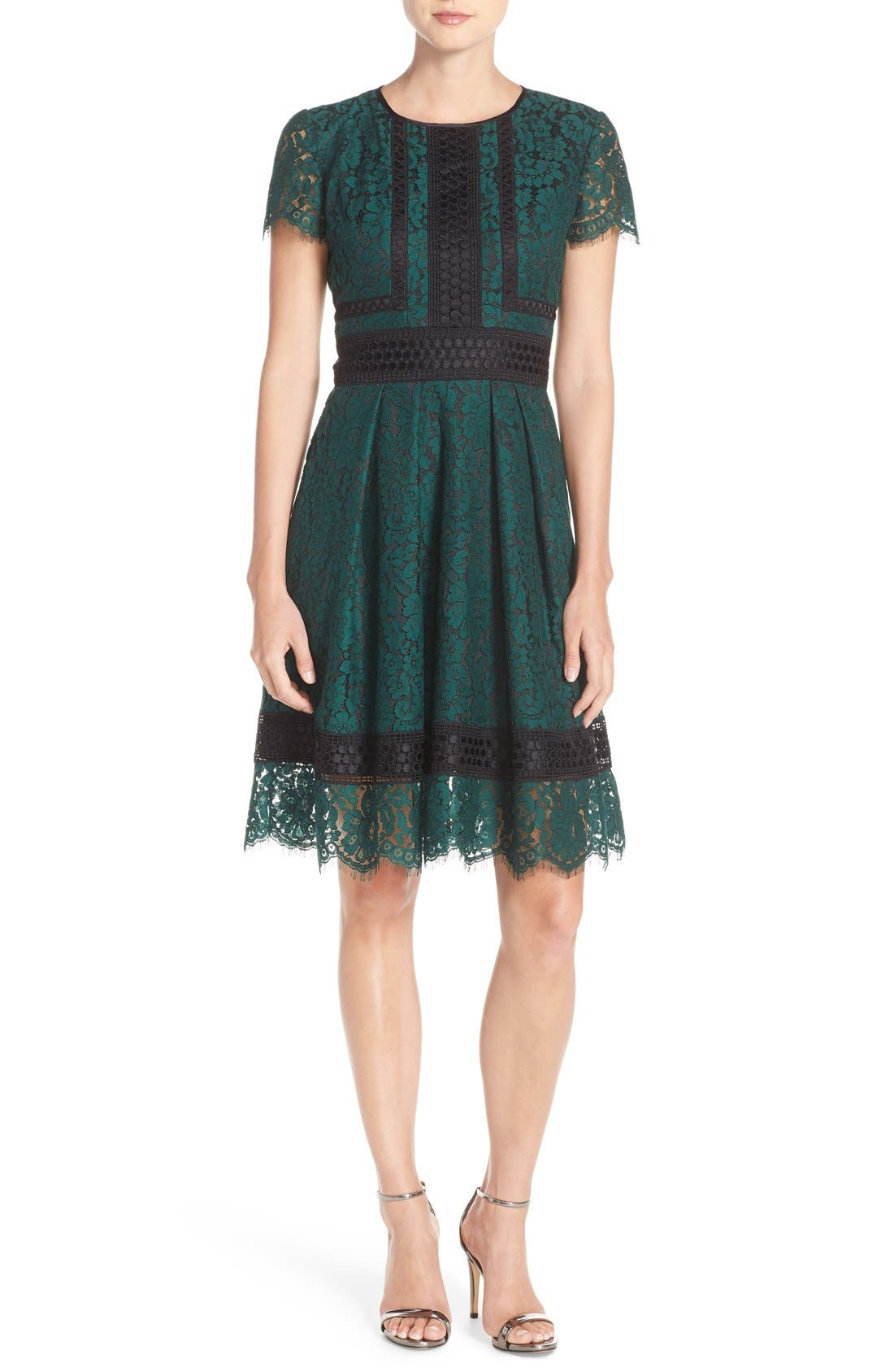 Alternate Image 5  - Eliza J Lace Fit & Flare Dress (Regular & Petite)