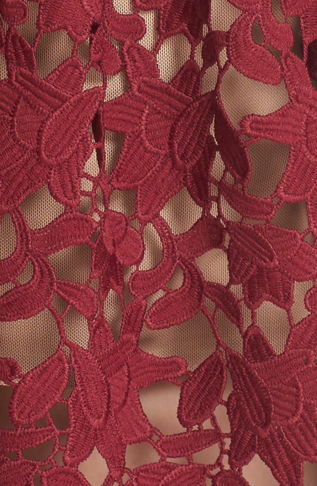 Alternate Image 5  - Self-Portrait 'Azaelea' Lace Fit & Flare Dress