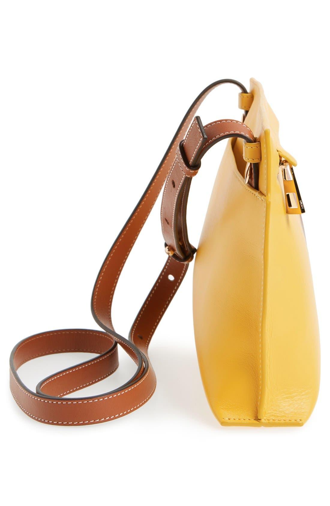 Alternate Image 5  - Loewe 'Fiore' Marquetry Calfskin Leather Crossbody Clutch