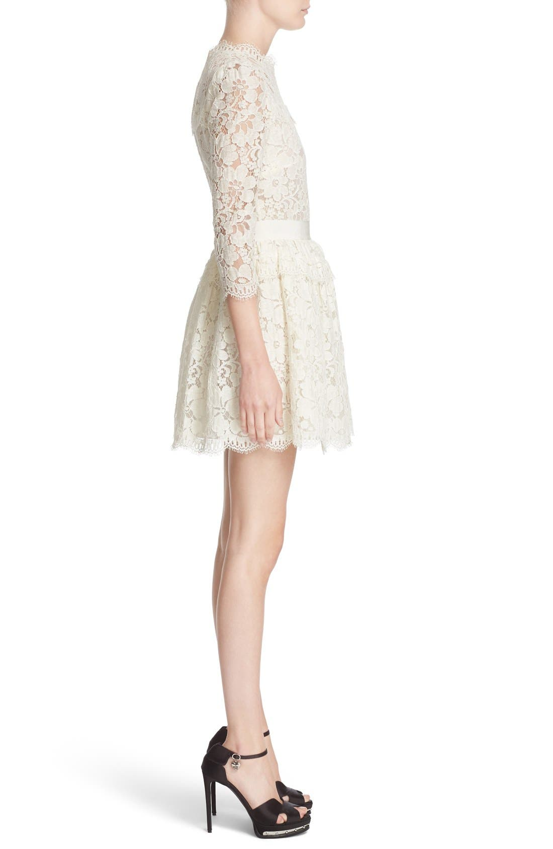 Alternate Image 4  - Alexander McQueen Floral Lace Dress