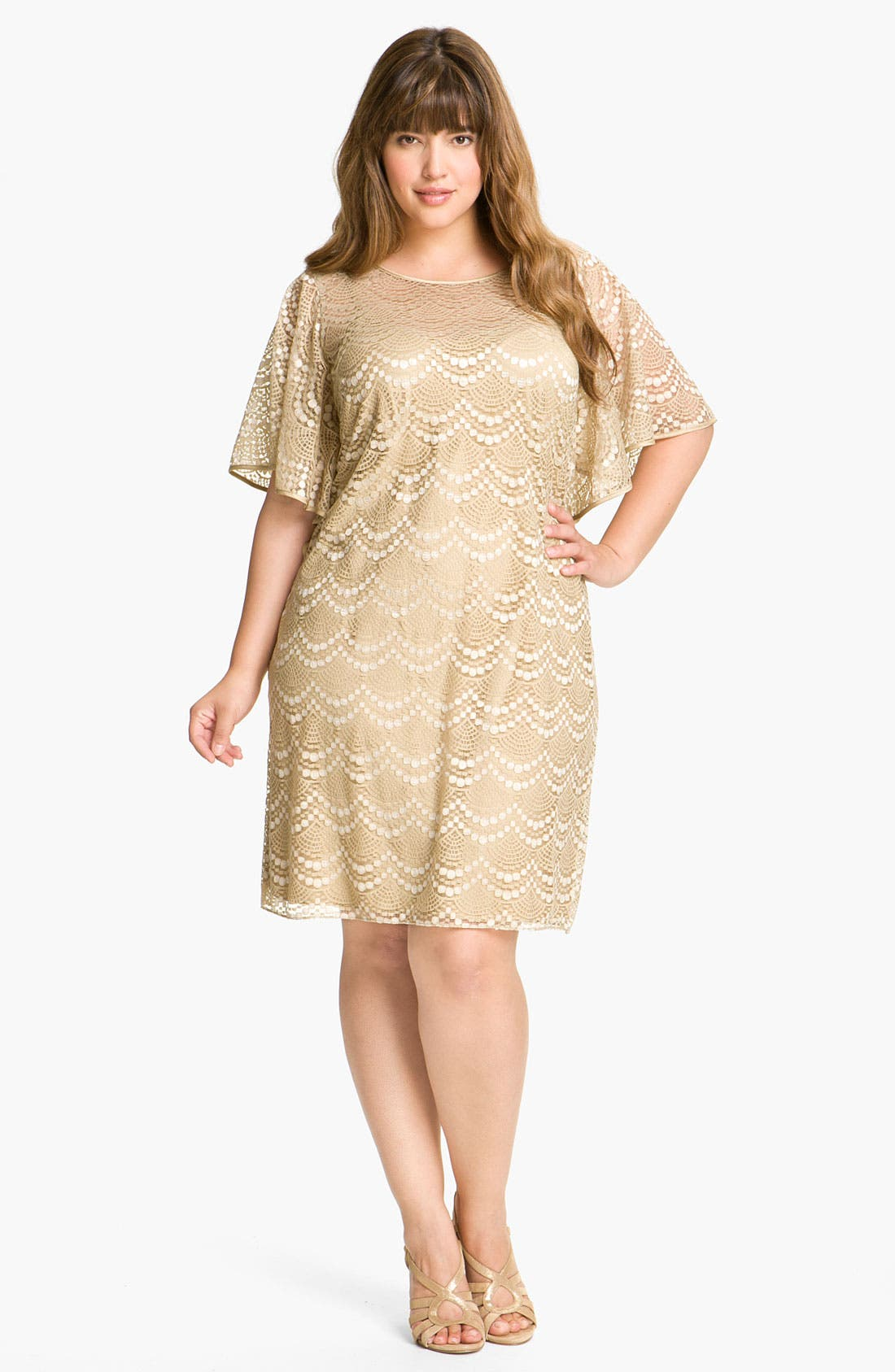 Main Image - Adrianna Papell Batwing Lace Overlay Dress (Plus)