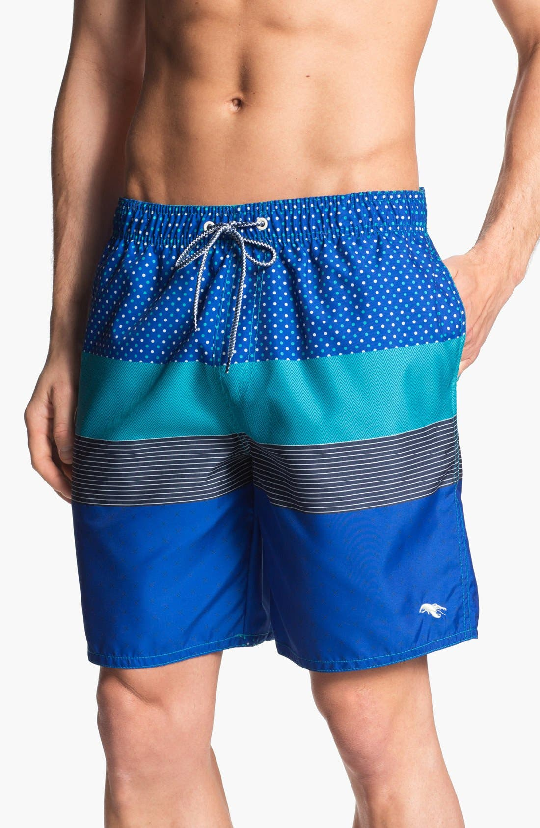 Main Image - Ted Baker London 'Caballo Stripe' Swim Trunks