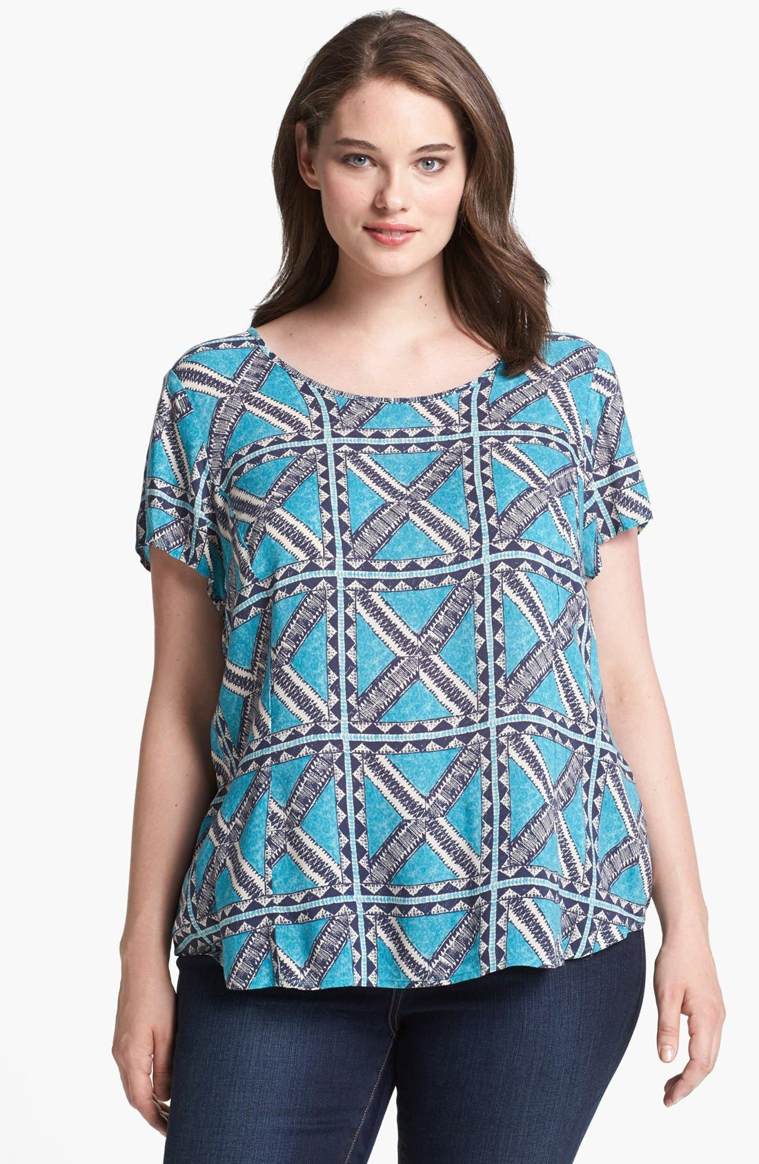 Alternate Image 1 Selected - Lucky Brand 'Brier Peter Dunham' Print Tee (Plus Size)