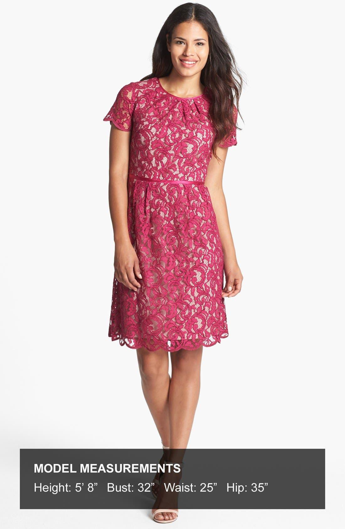 Alternate Image 4  - Adrianna Papell Scalloped Lace Dress (Regular & Petite)