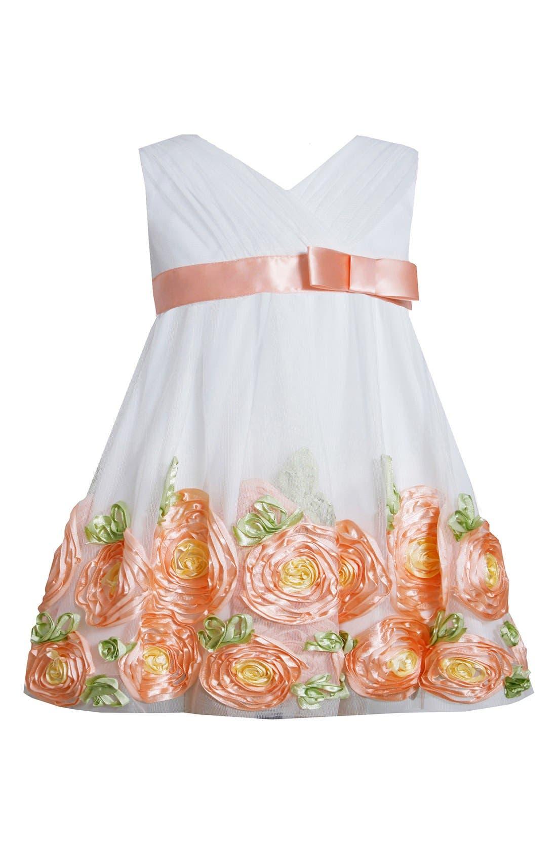 Alternate Image 1 Selected - Iris & Ivy Rose Border Dress (Baby Girls)