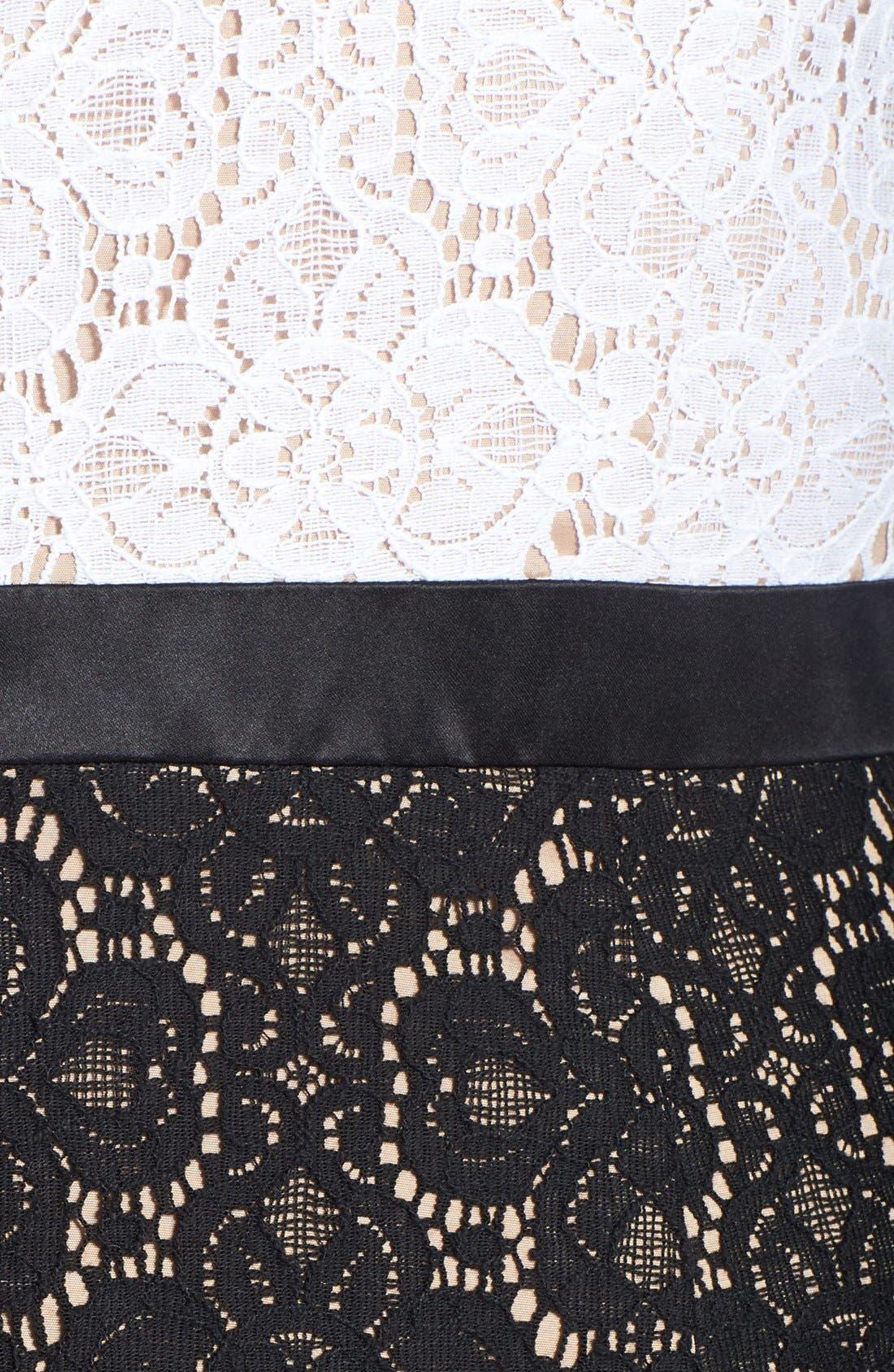 Alternate Image 3  - Adrianna Papell Colorblock Lace Sheath Dress (Plus Size)