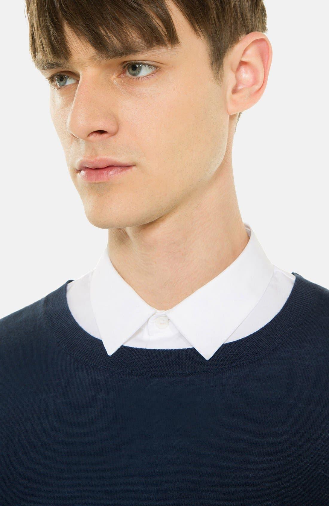 Alternate Image 3  - sandro 'Birdy' Merino Wool Sweater