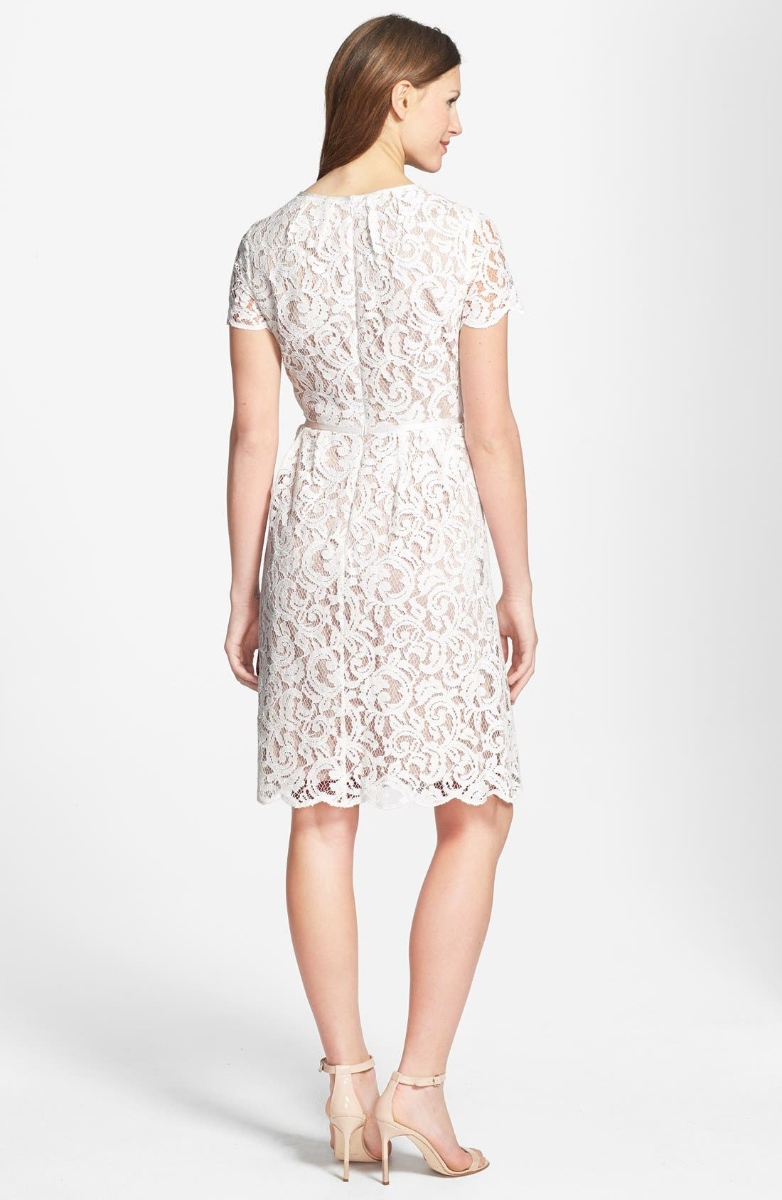 Alternate Image 2  - Adrianna Papell Scalloped Lace Dress (Regular & Petite)