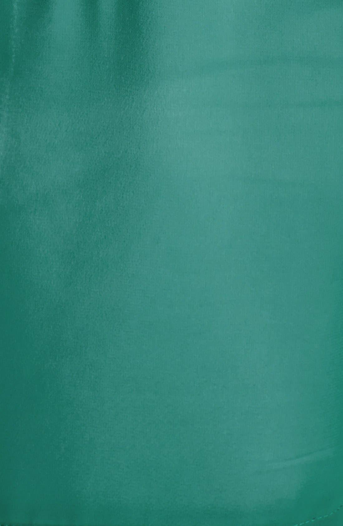 Alternate Image 3  - Hinge® Embroidered Bib Sleeveless Blouse
