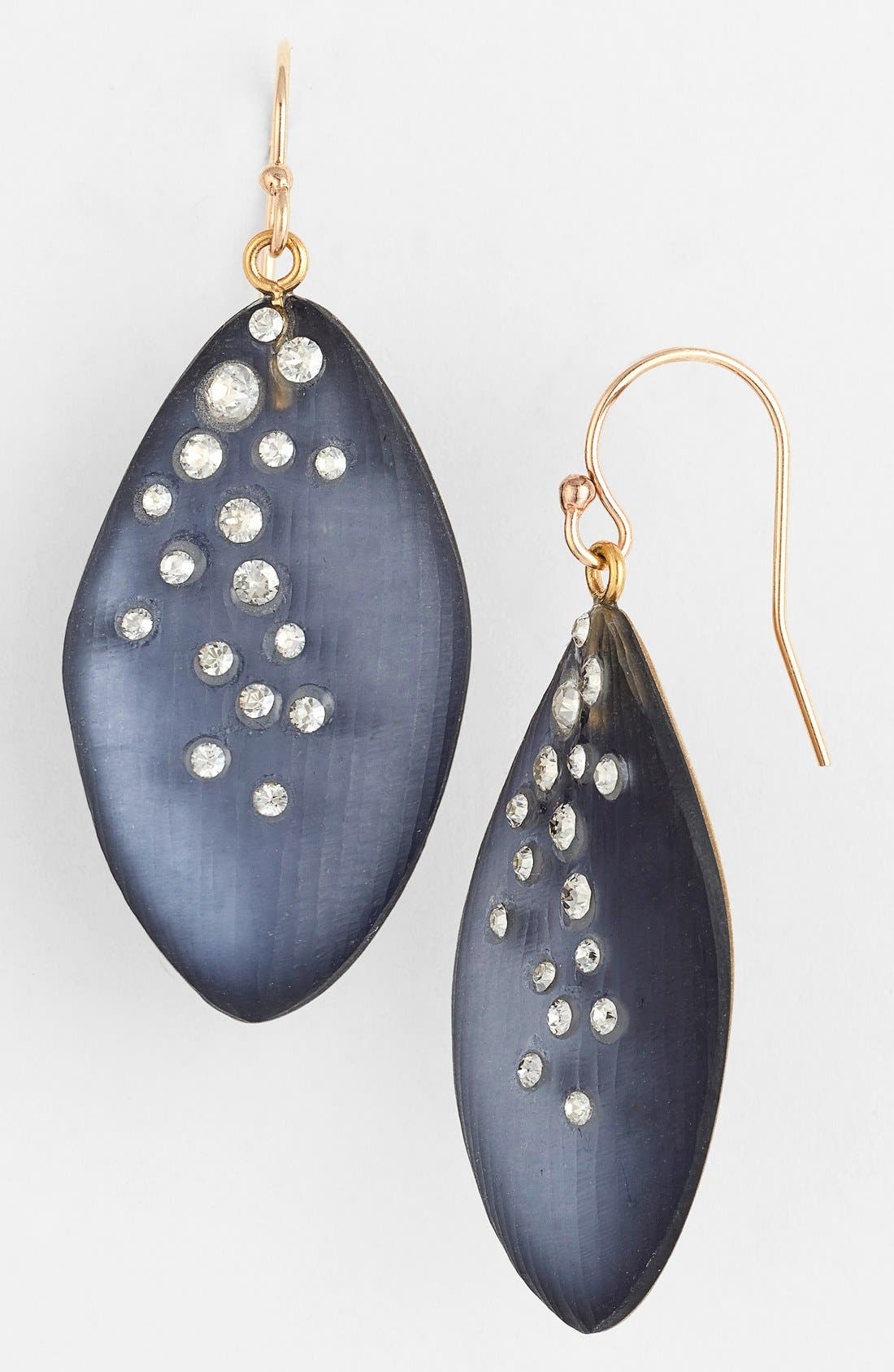 Alternate Image 1 Selected - Alexis Bittar 'Lucite® - Dust' Long Leaf Statement Earrings