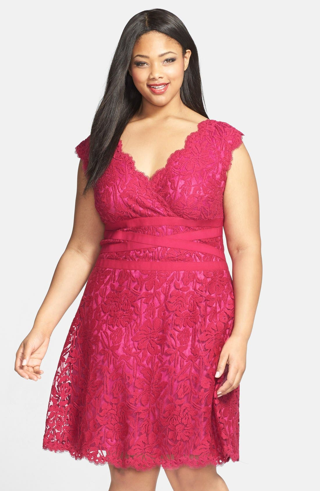 Alternate Image 1 Selected - Tadashi Shoji Embroidered Lace Fit & Flare Dress (Plus Size)