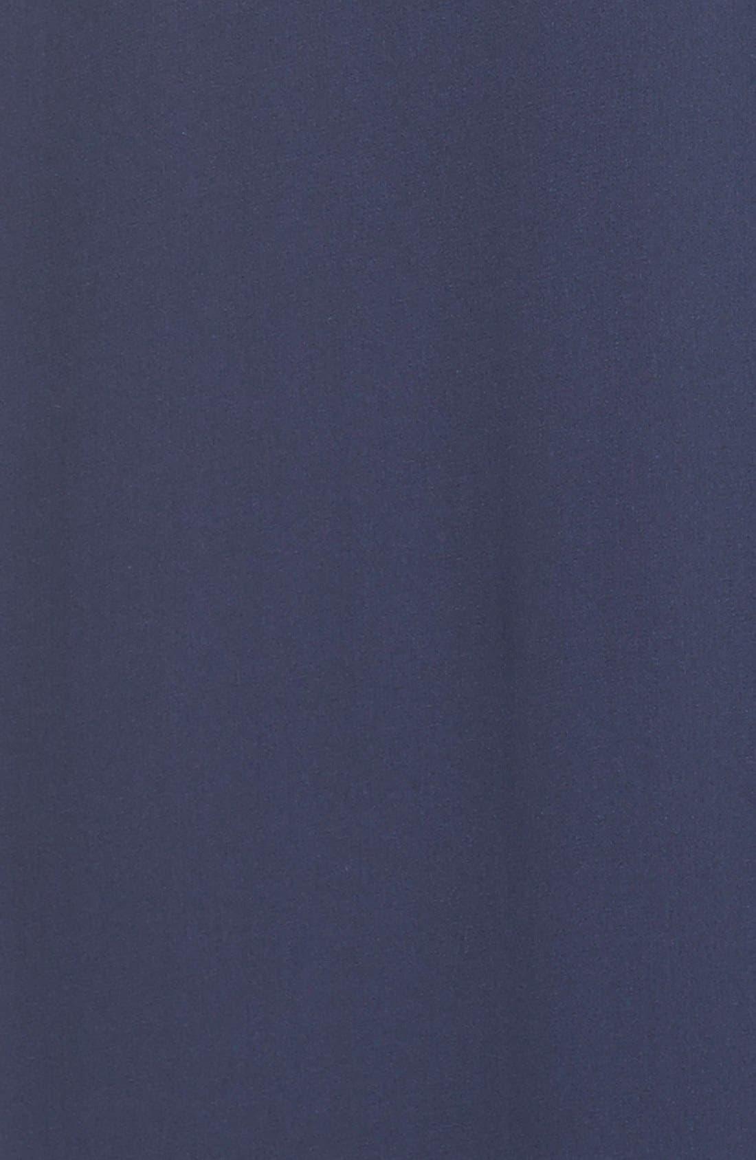 Alternate Image 4  - BCBGMAXAZRIA Lace Inset Silk Chiffon Gown