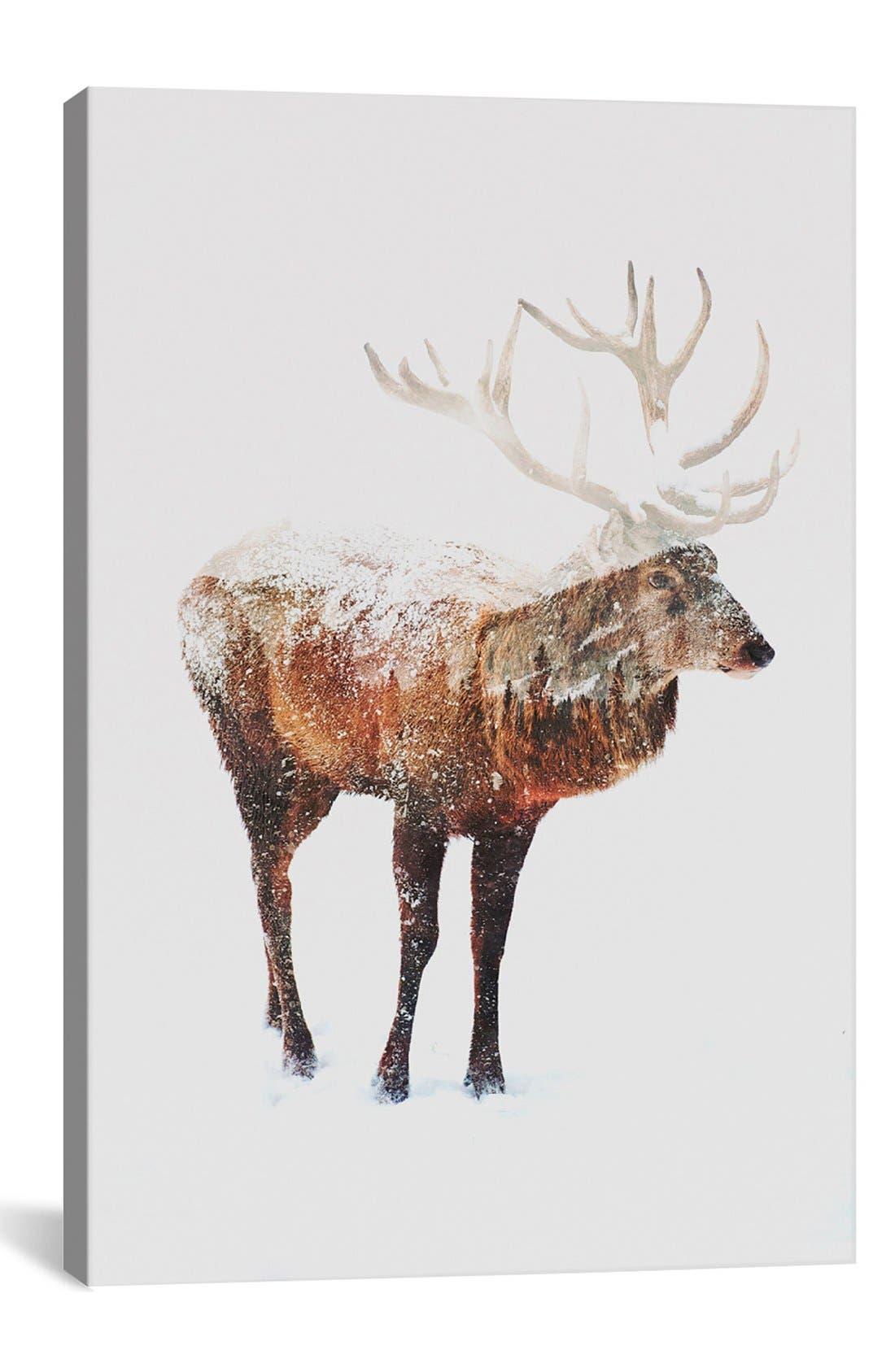 iCanvas 'Deer V' Giclée Print Canvas Art