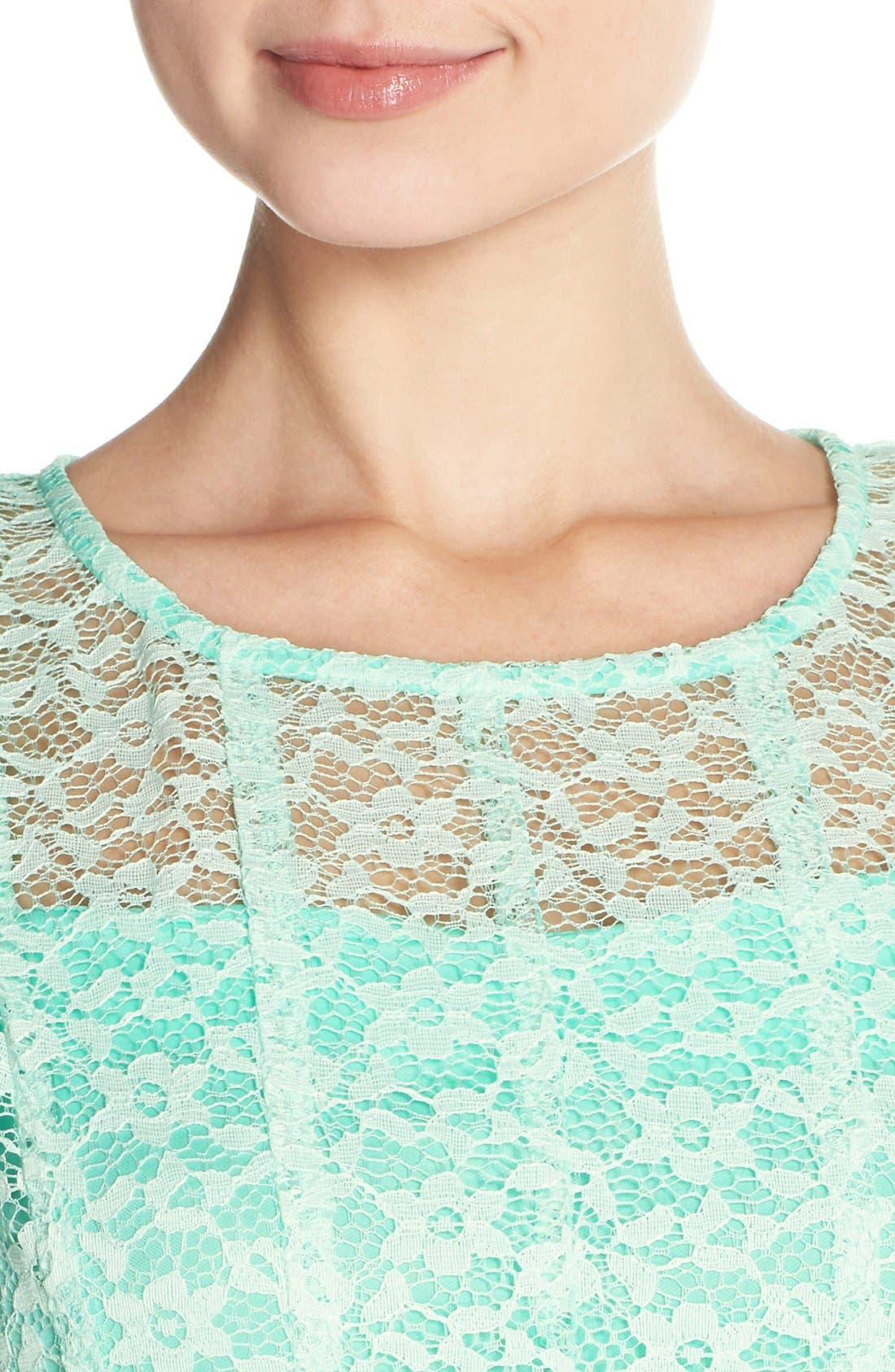 Alternate Image 4  - Chetta B Ombré Lace Sleeveless A-Line Dress with Belt