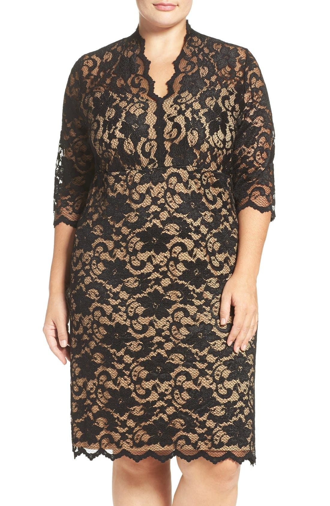 Karen Kane Scalloped V-Neck Stretch Lace Dress (Plus Size)
