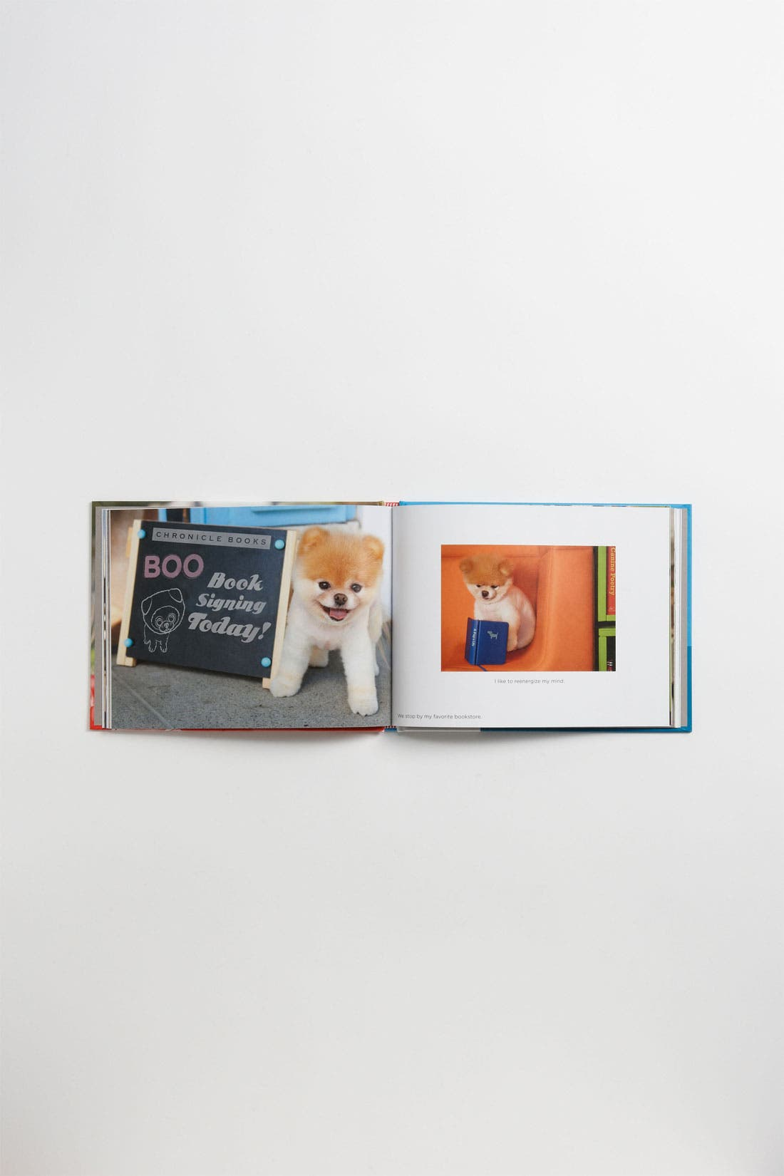 Alternate Image 2  - Boo: Little Dog in the Big City' Book