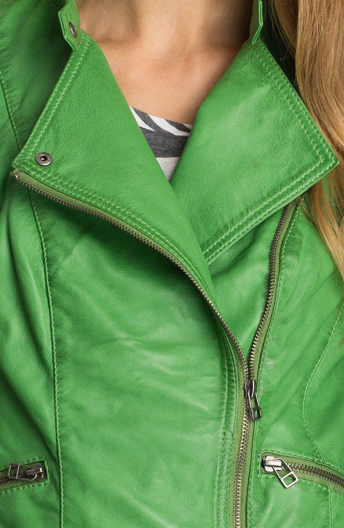 Alternate Image 3  - Bernardo Leather Moto Jacket (Regular & Petite) (Nordstrom Exclusive)