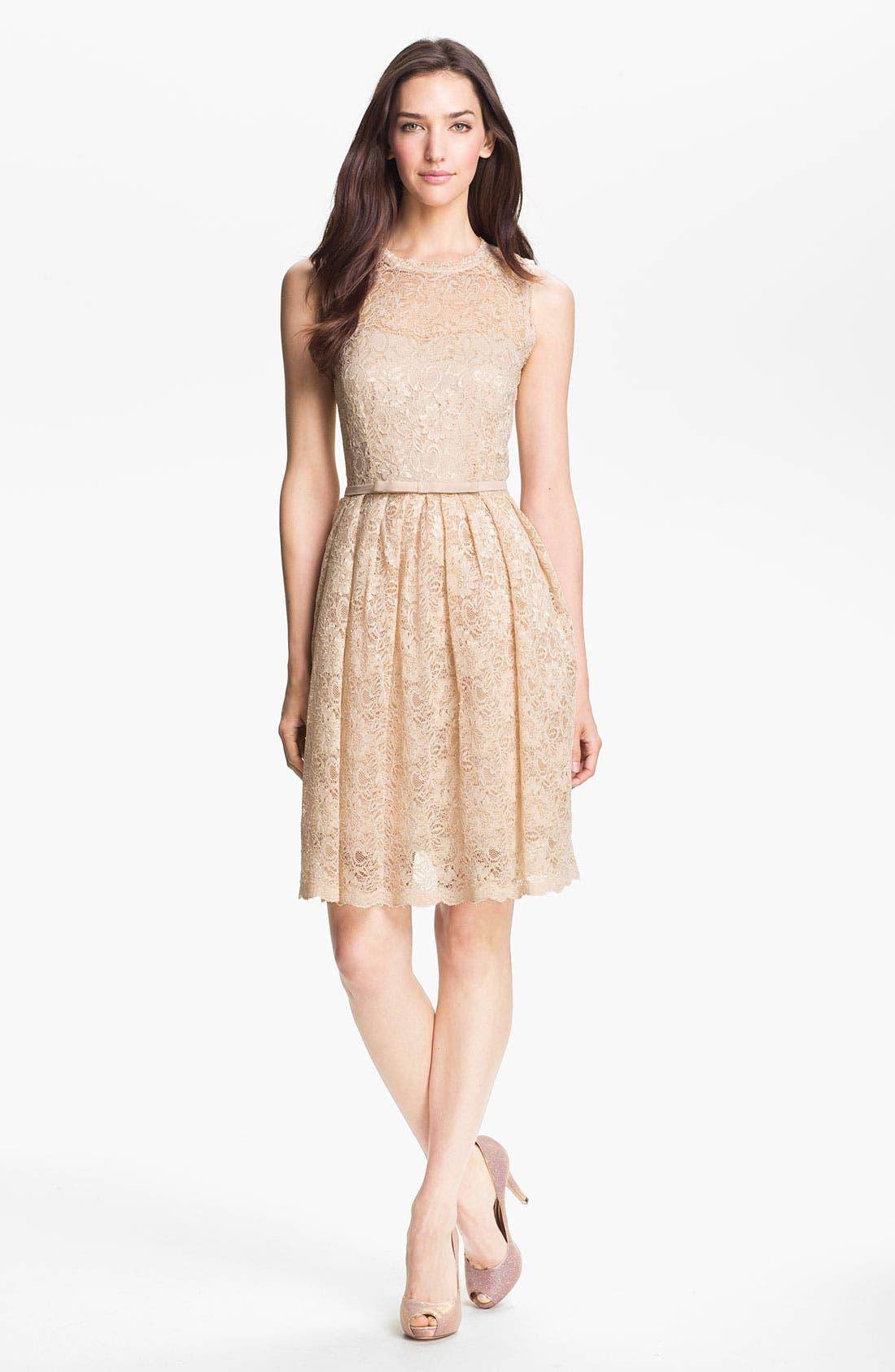 Alternate Image 1 Selected - Taylor Dresses Illusion Yoke Lace Fit & Flare Dress