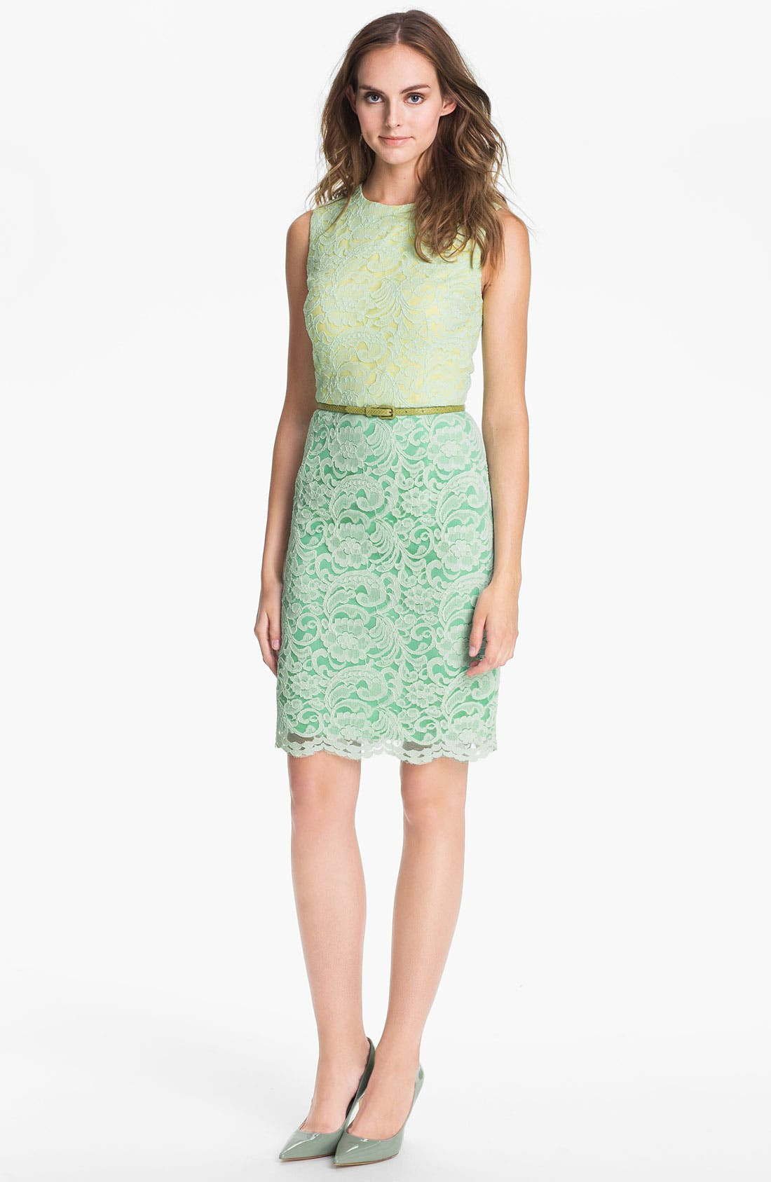 Alternate Image 1 Selected - Maggy London Belted Lace Sheath Dress