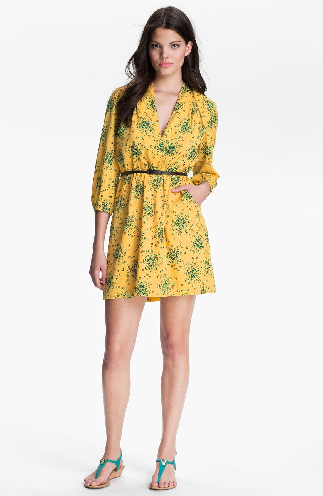 Alternate Image 1 Selected - Kensie 'Daisy Cluster' Dress