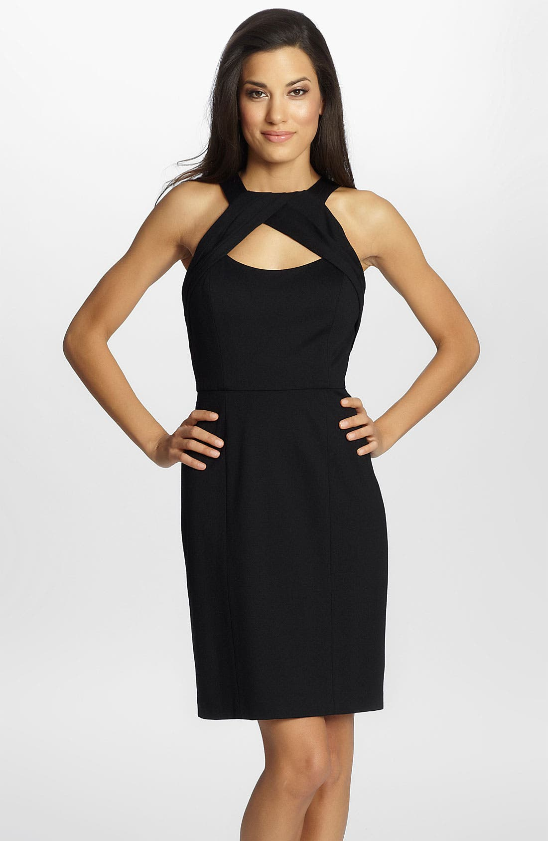 Alternate Image 1 Selected - Cynthia Steffe 'Sophia' Front Cutout Sheath Dress