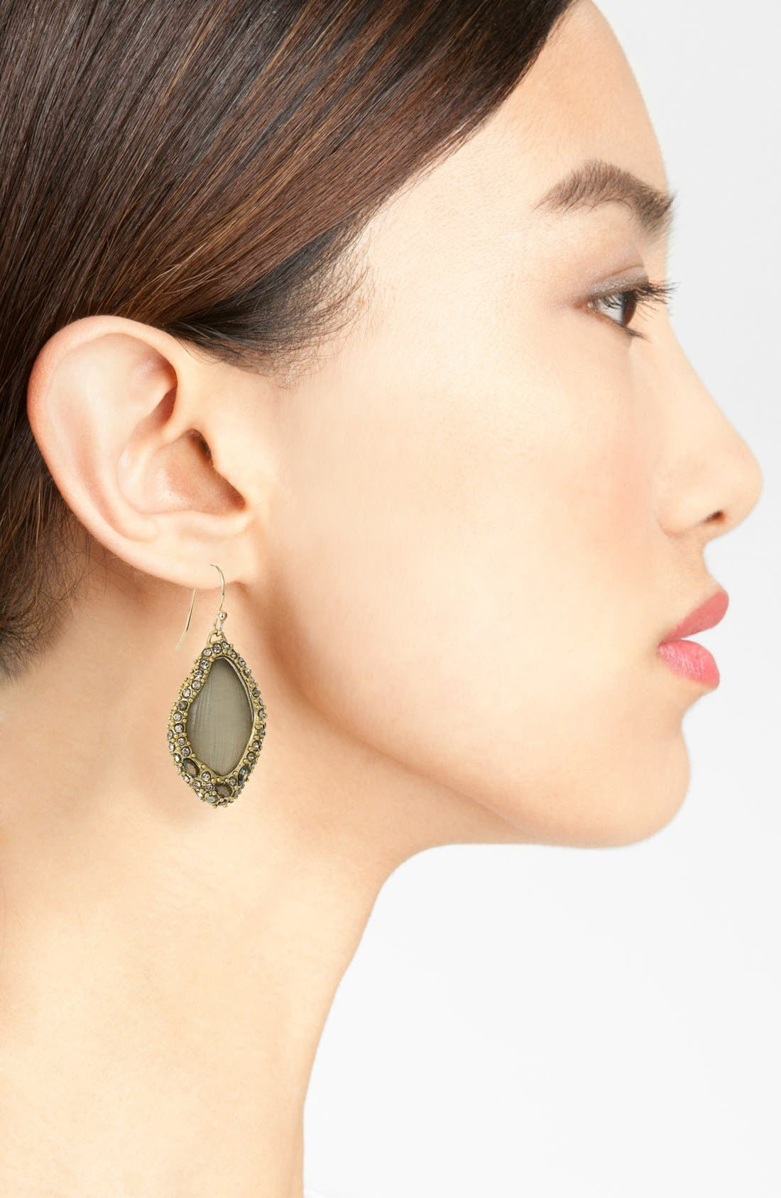 Alternate Image 2  - Alexis Bittar 'Lucite® - Neo Bohemian' Pavé Encased Drop Earrings