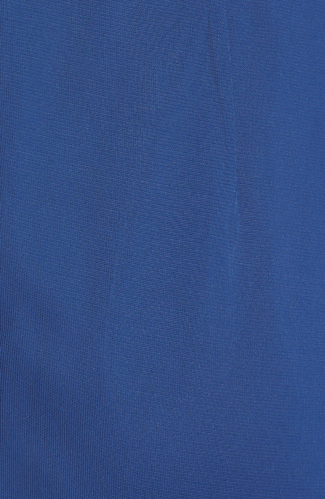 Alternate Image 3  - Alex Evenings Embellished Cap Sleeve Gown