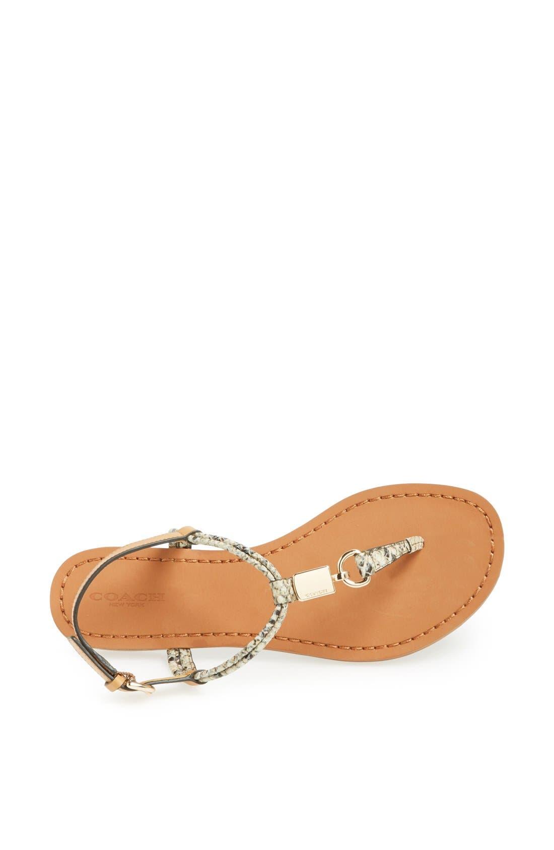 Alternate Image 3  - COACH 'Charleen' Leather Thong Sandal
