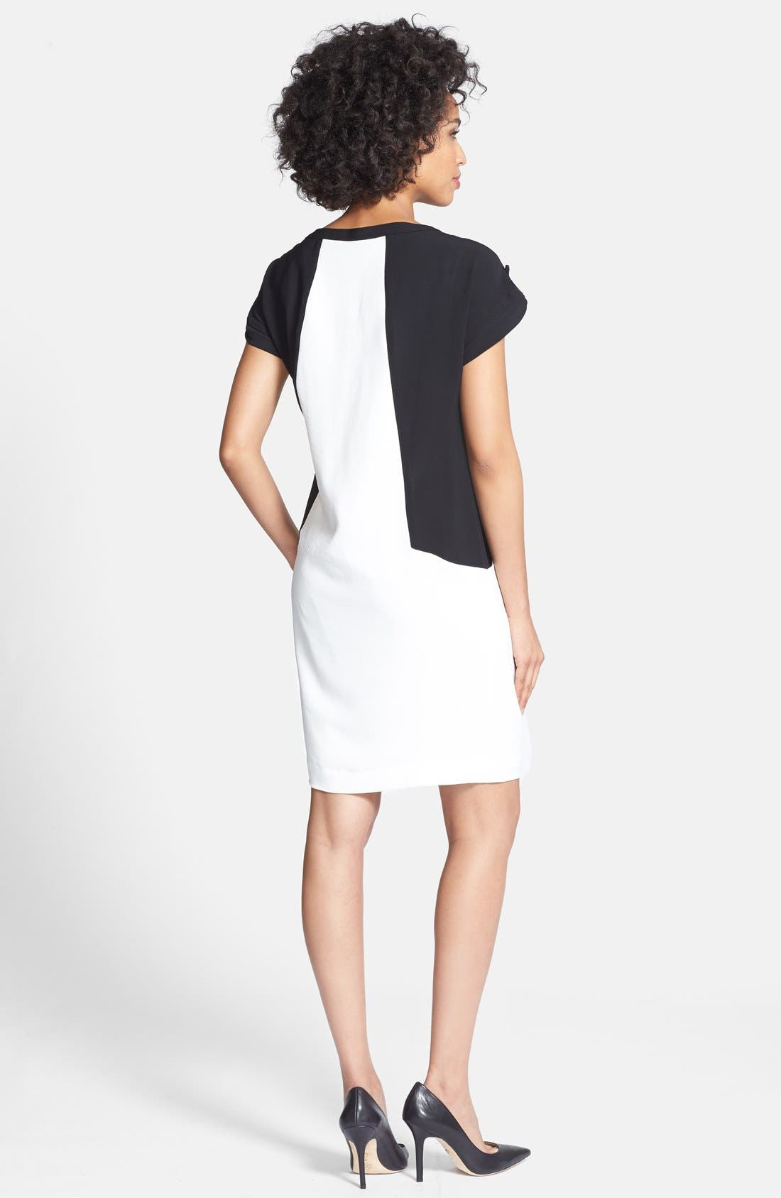 Alternate Image 2  - Adrianna Papell Colorblock Shift Dress