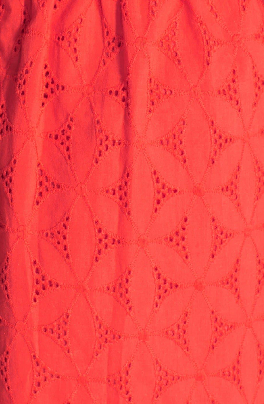 Alternate Image 3  - kensie Embroidered Eyelet Cotton Fit & Flare Dress