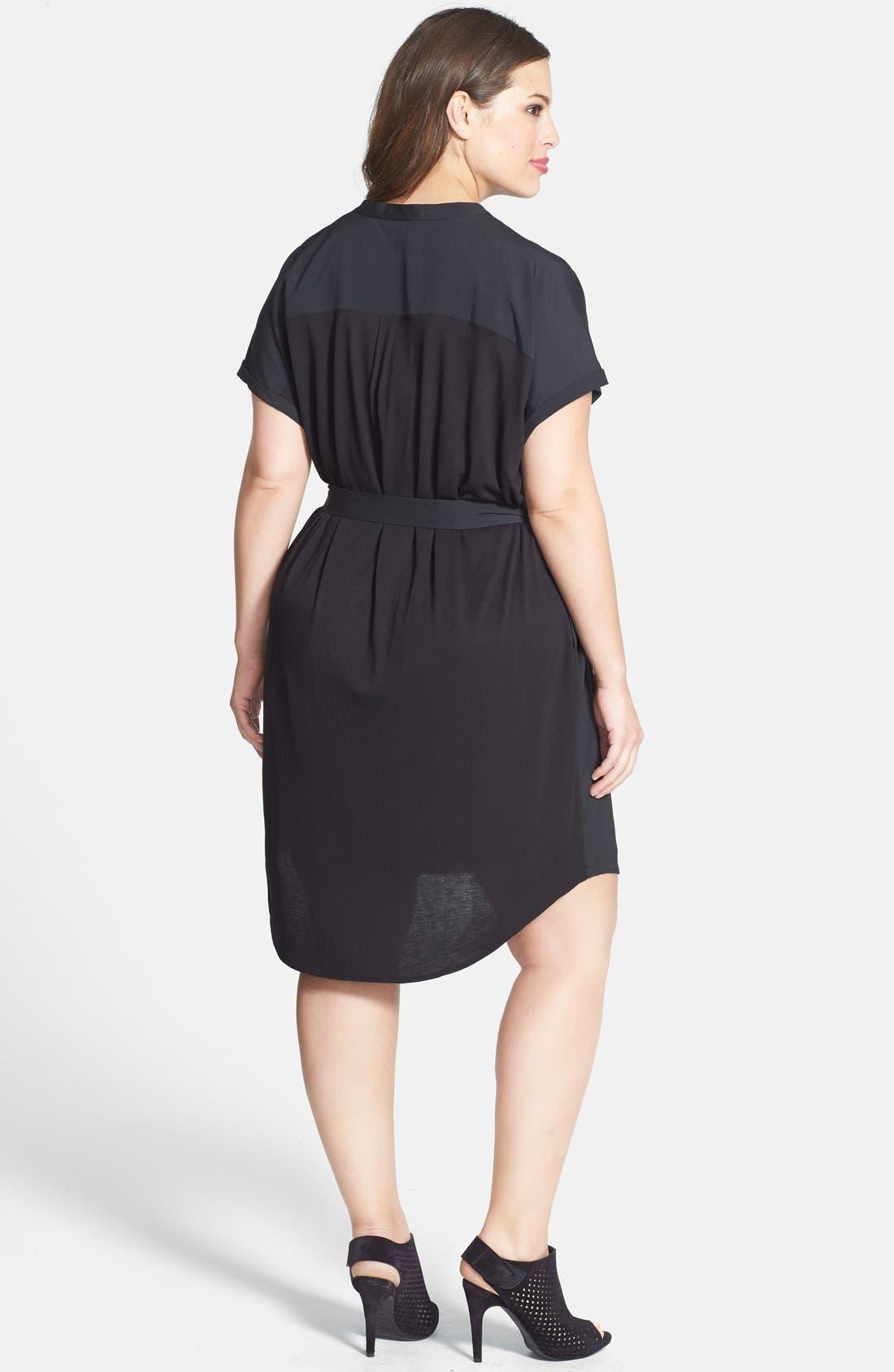 Alternate Image 2  - DKNYC Half Placket Shirtdress (Plus Size)