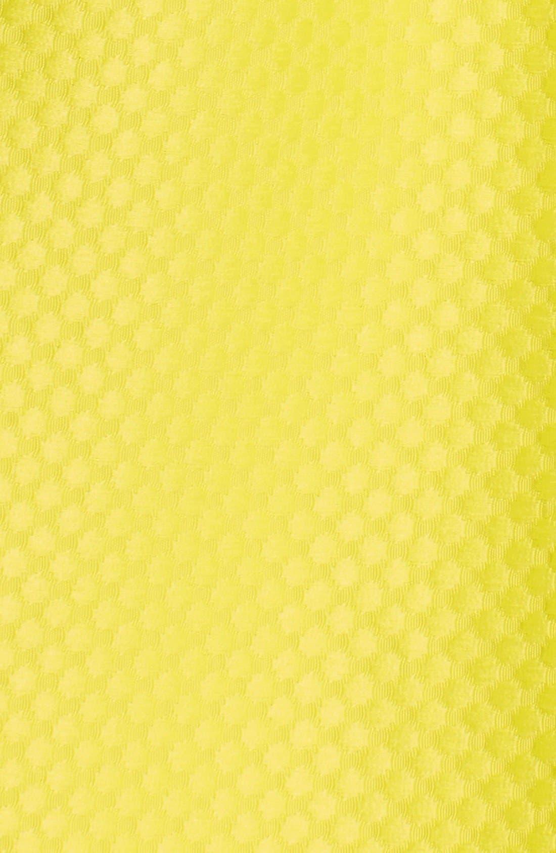 Alternate Image 3  - Lucy Paris Textured Full Midi Skirt