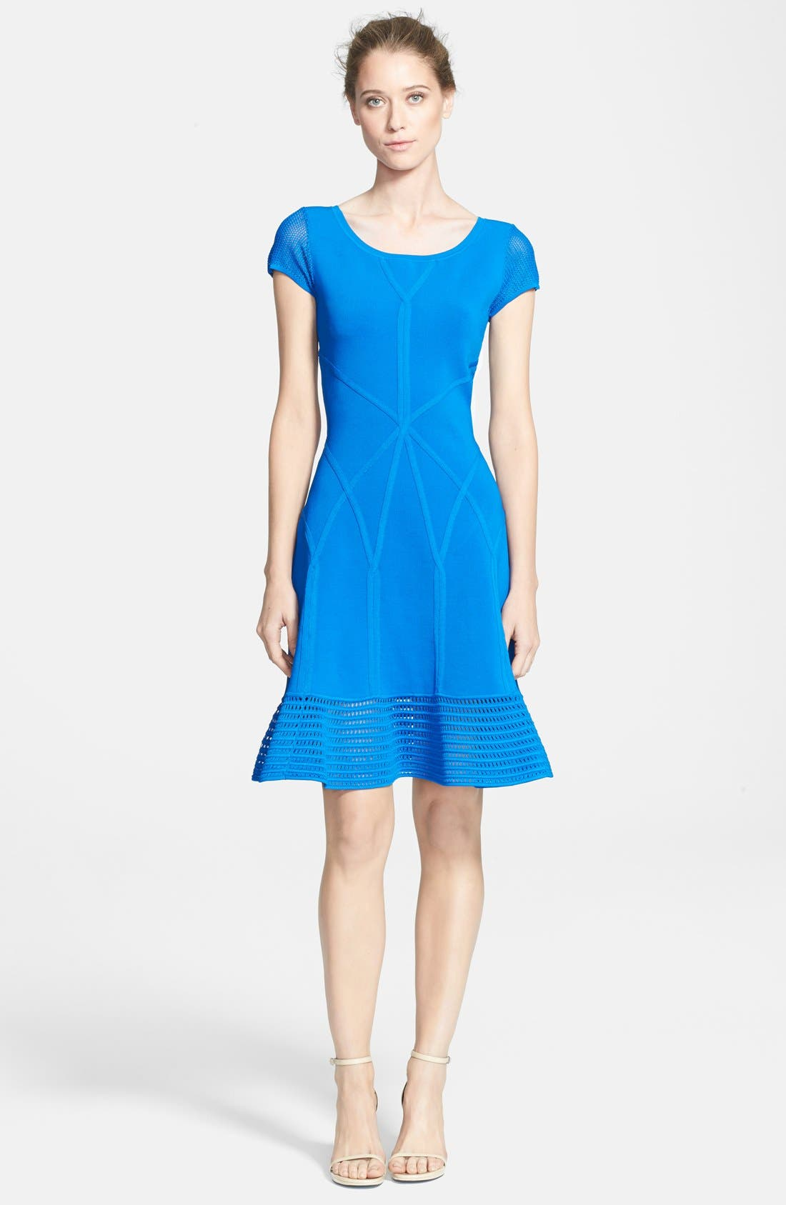 Alternate Image 1 Selected - Diane von Furstenberg 'St. Petersburg' Knit A-Line Dress