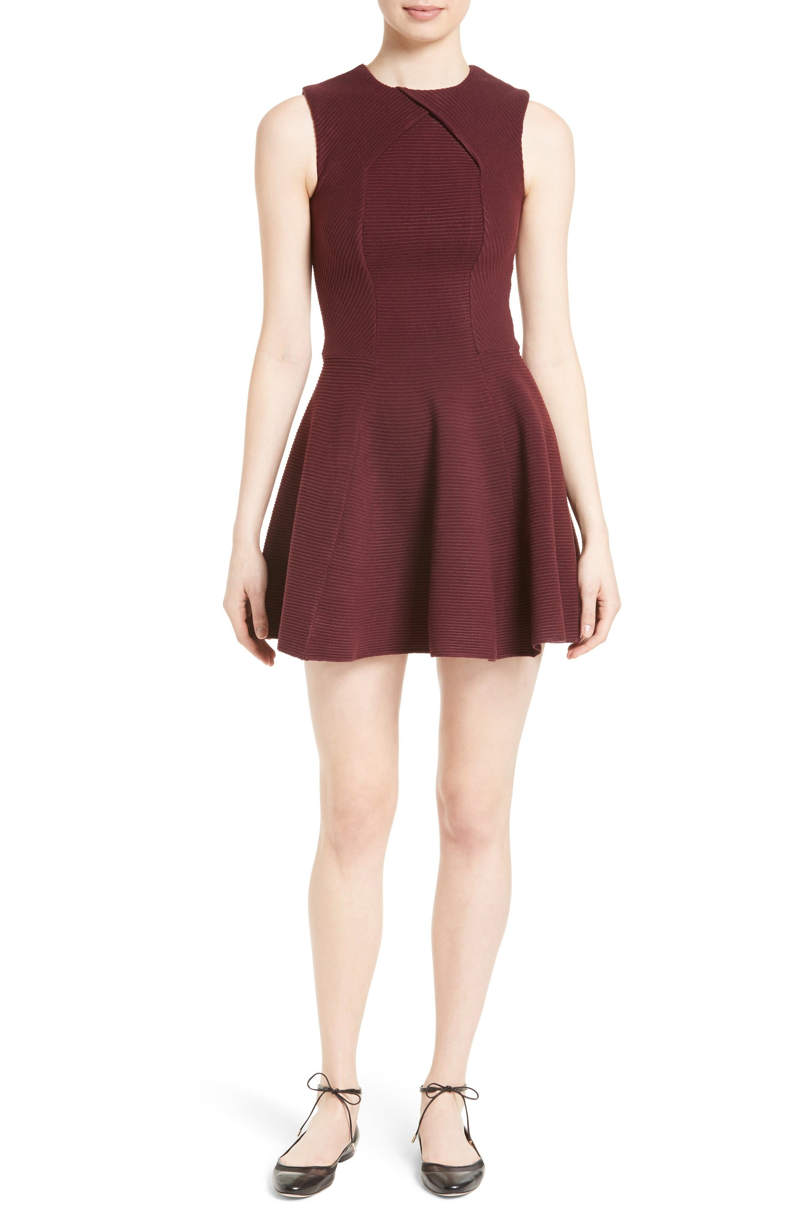 Alternate Image 1 Selected - Ted Baker London Azelia Skater Dress