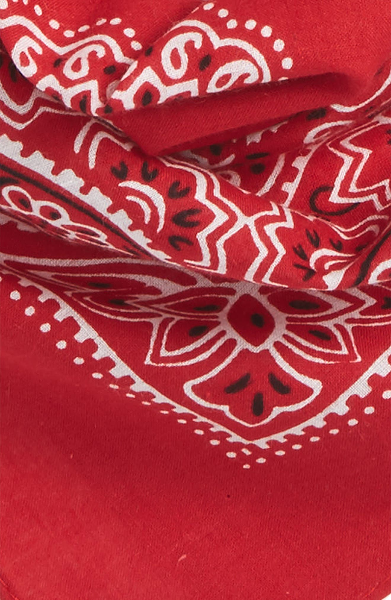 Alternate Image 3  - BP. Bandana