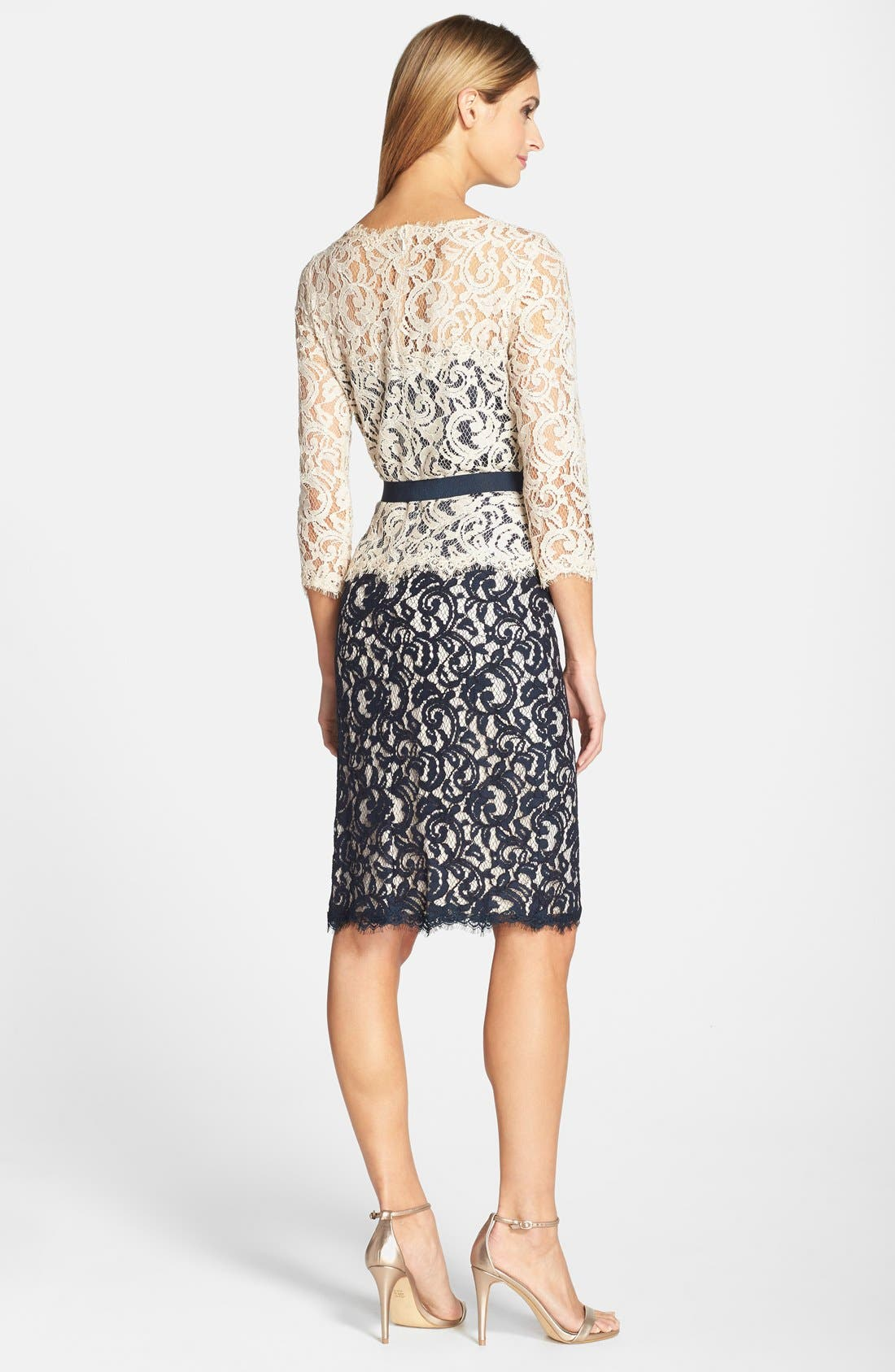 Alternate Image 2  - Tadashi Shoji Two-Tone Lace Sheath Dress (Regular & Petite)