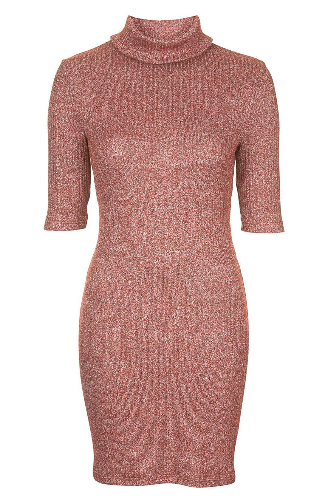 Alternate Image 4  - Topshop Ribbed Turtleneck Dress