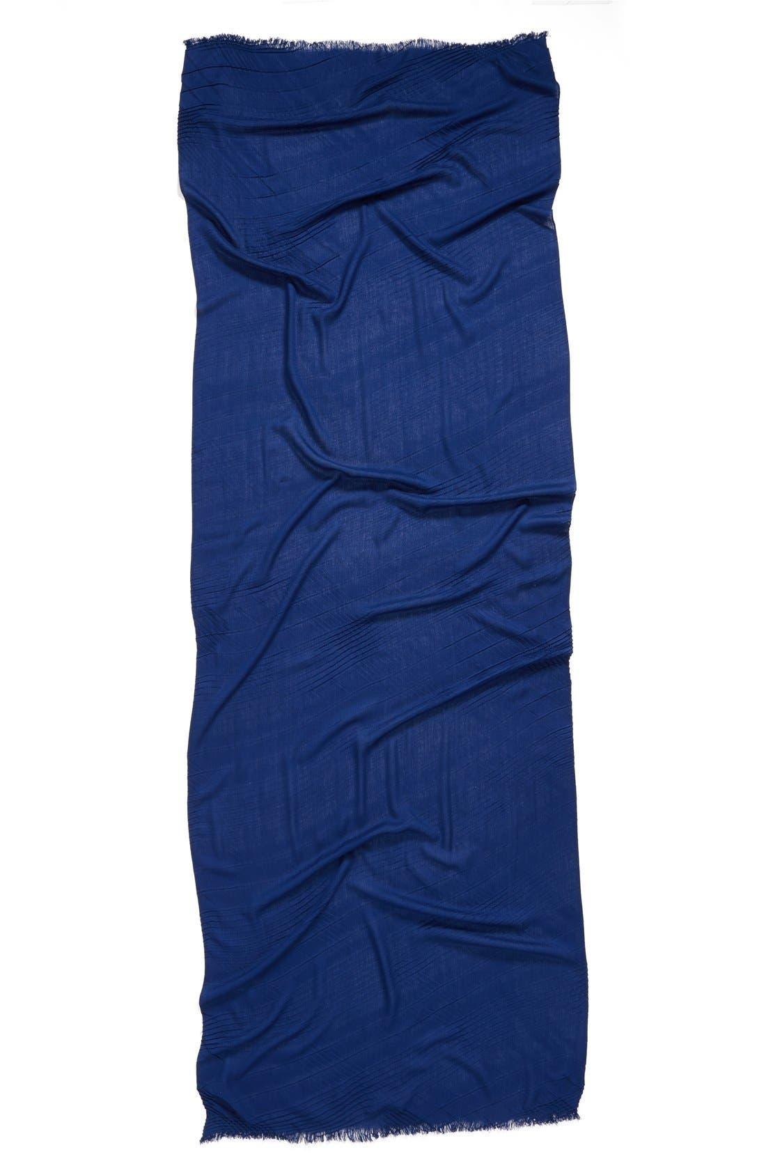 Alternate Image 3  - Echo Pleated Blanket Scarf