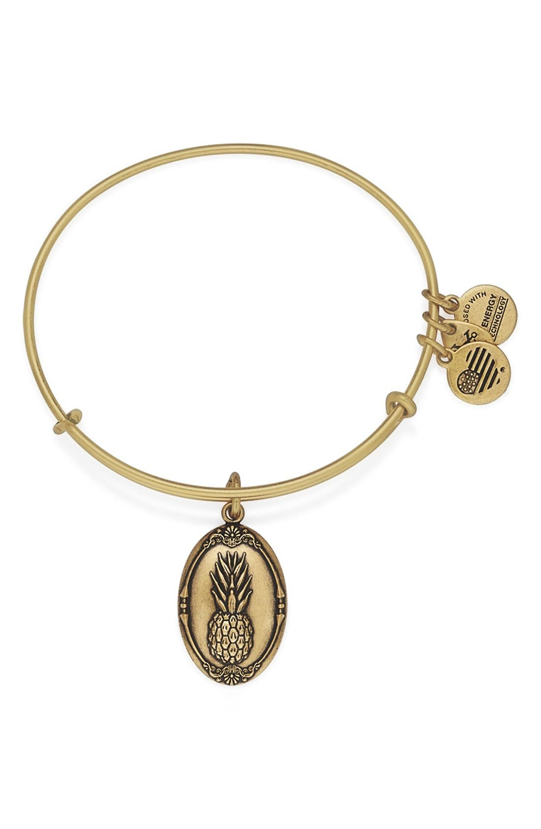 Alternate Image 1 Selected - Alex and Ani 'Pineapple' Adjustable Wire Bangle