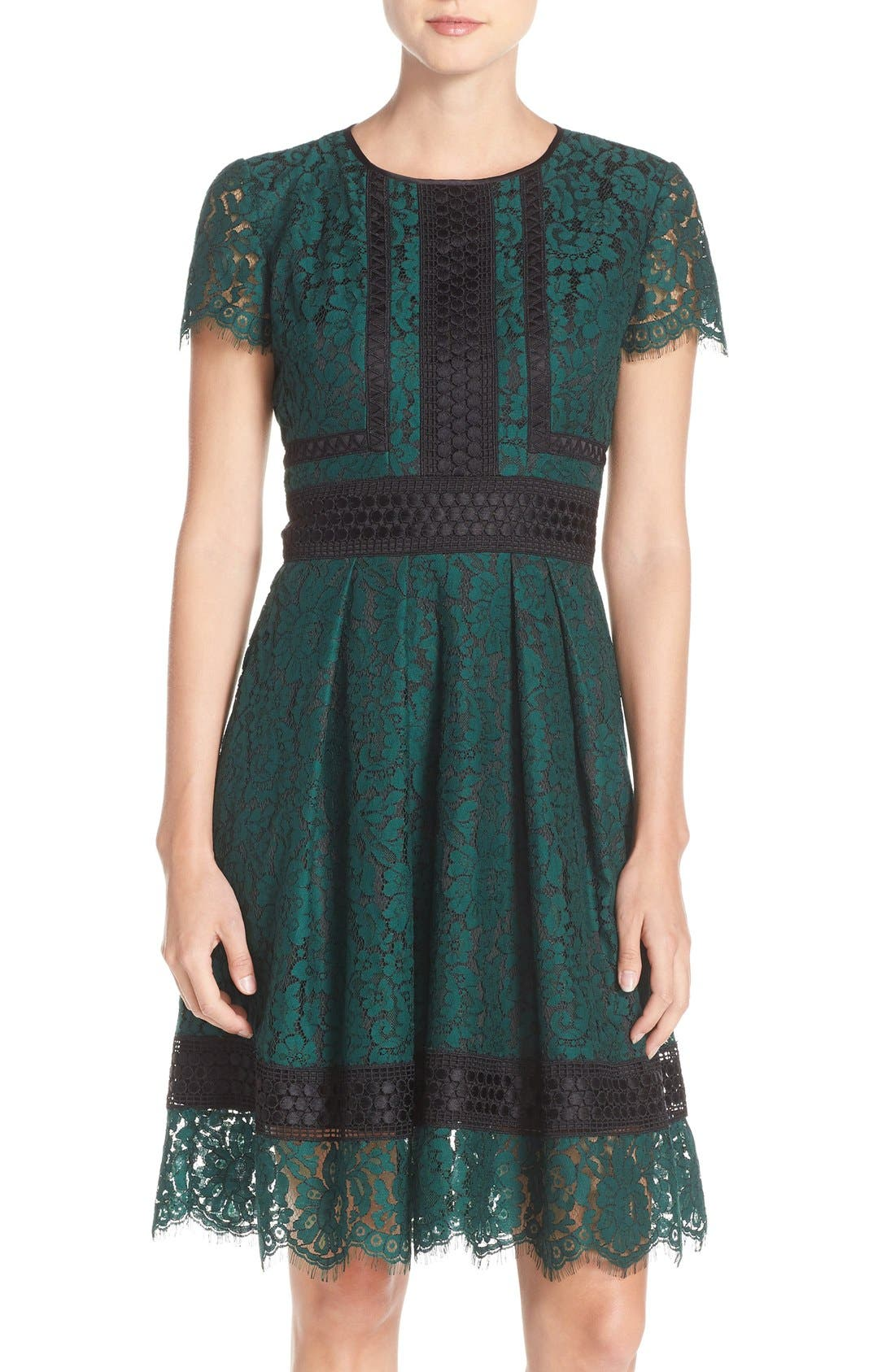 Main Image - Eliza J Lace Fit & Flare Dress (Regular & Petite)