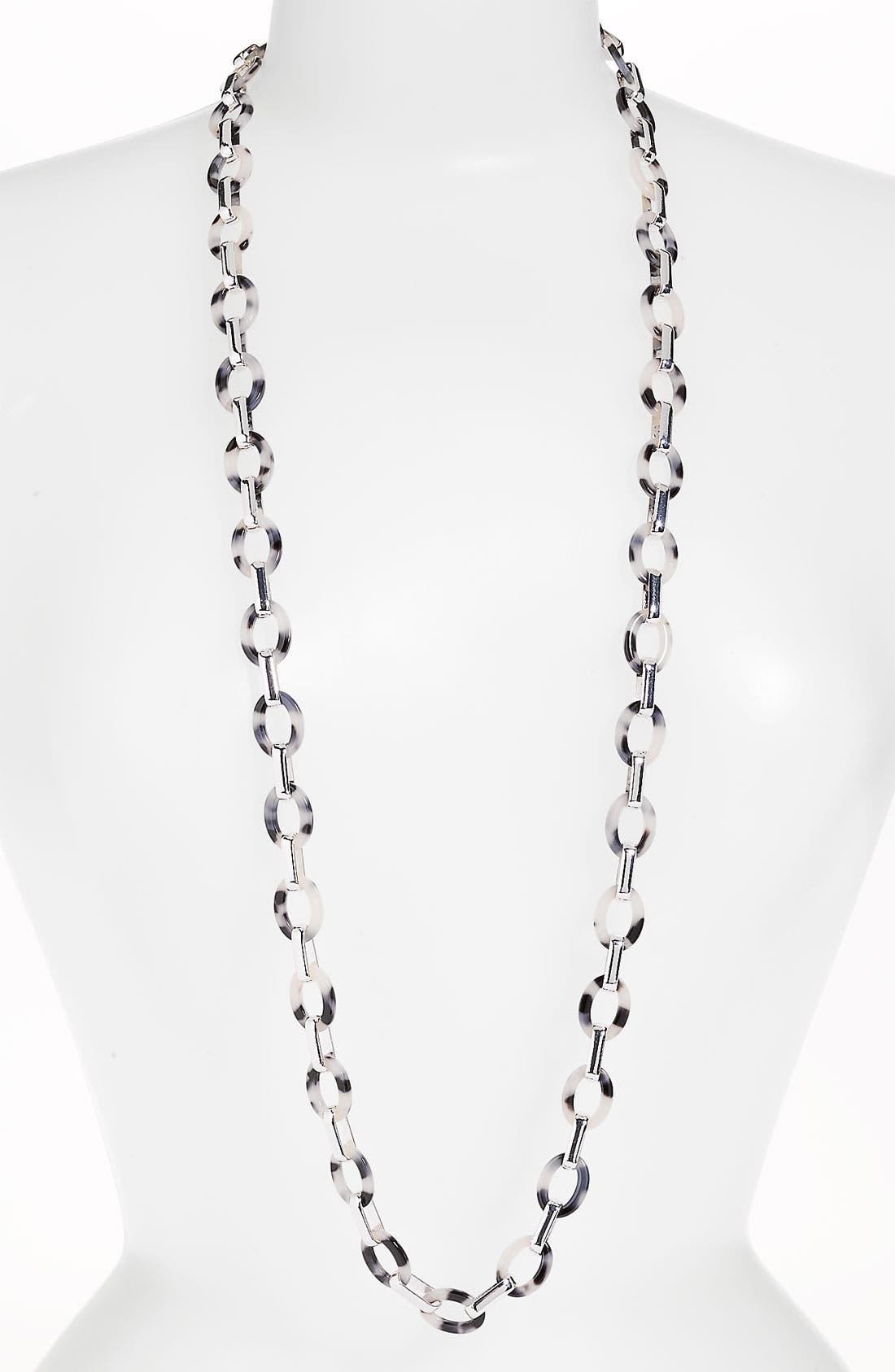 Alternate Image 1 Selected - Anne Klein 'Belden Place' Long Link Necklace