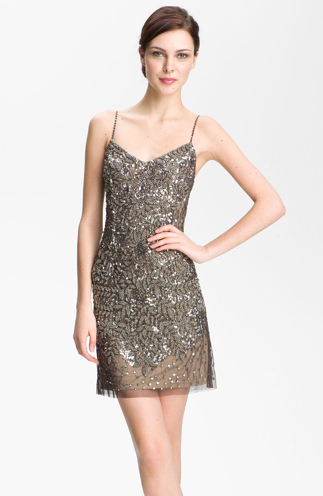 Alternate Image 1 Selected - Adrianna Papell Spaghetti Strap Embellished Mesh Dress