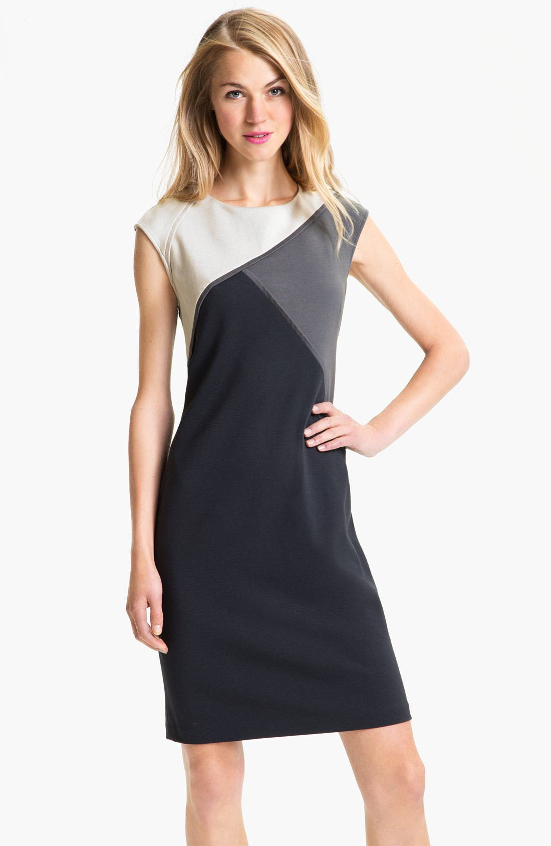 Alternate Image 1 Selected - Adrianna Papell Colorblock Sheath Dress