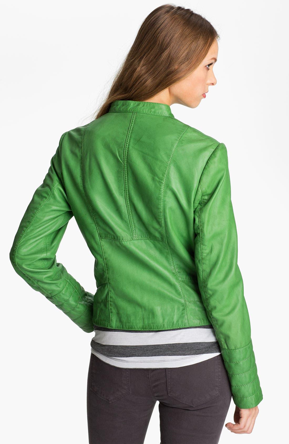 Alternate Image 2  - Bernardo Leather Moto Jacket (Regular & Petite) (Nordstrom Exclusive)