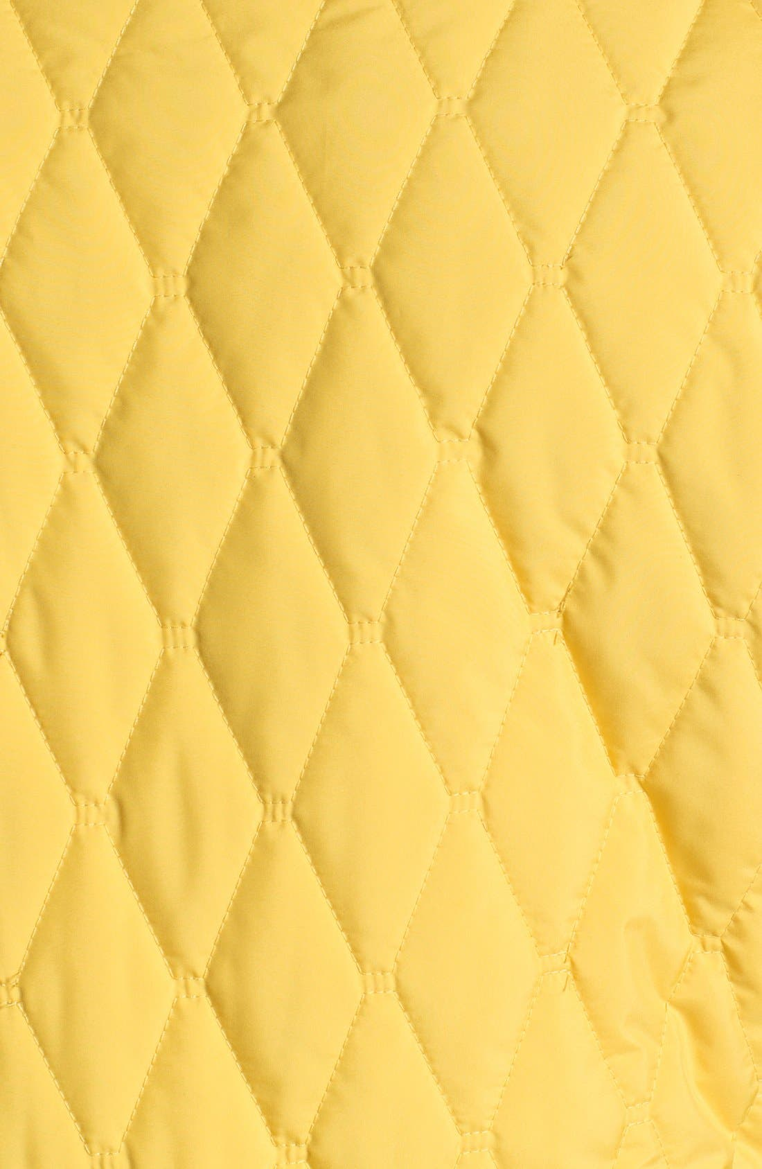 Alternate Image 3  - Victorinox Swiss Army® 'Glares' Quilted Vest (Online Only)