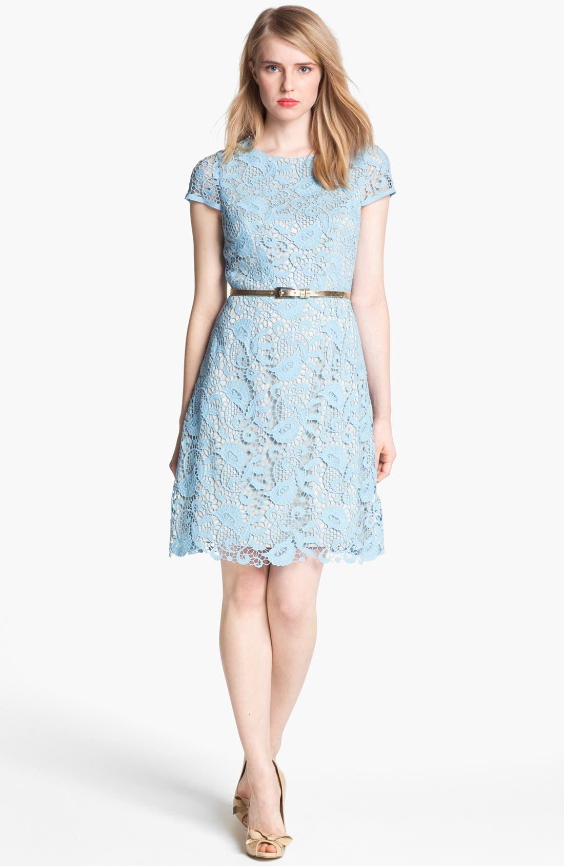 Alternate Image 1 Selected - Eliza J Belted Cotton Lace Dress
